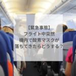 【緊急事態】フライト中突然機内で酸素マスクが落ちてきたらどうする?
